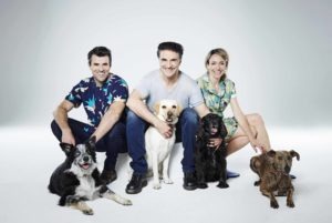 Animal Rescue Live hosts Steve Jones, Professor Noel Fitzpatrick and Kate Quilton