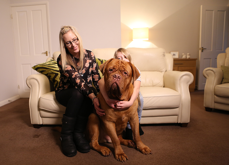 Reggie with his family from The Supervet